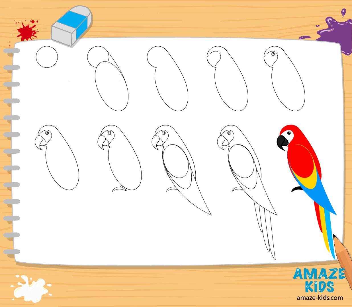 Рисунок легкого попугая
